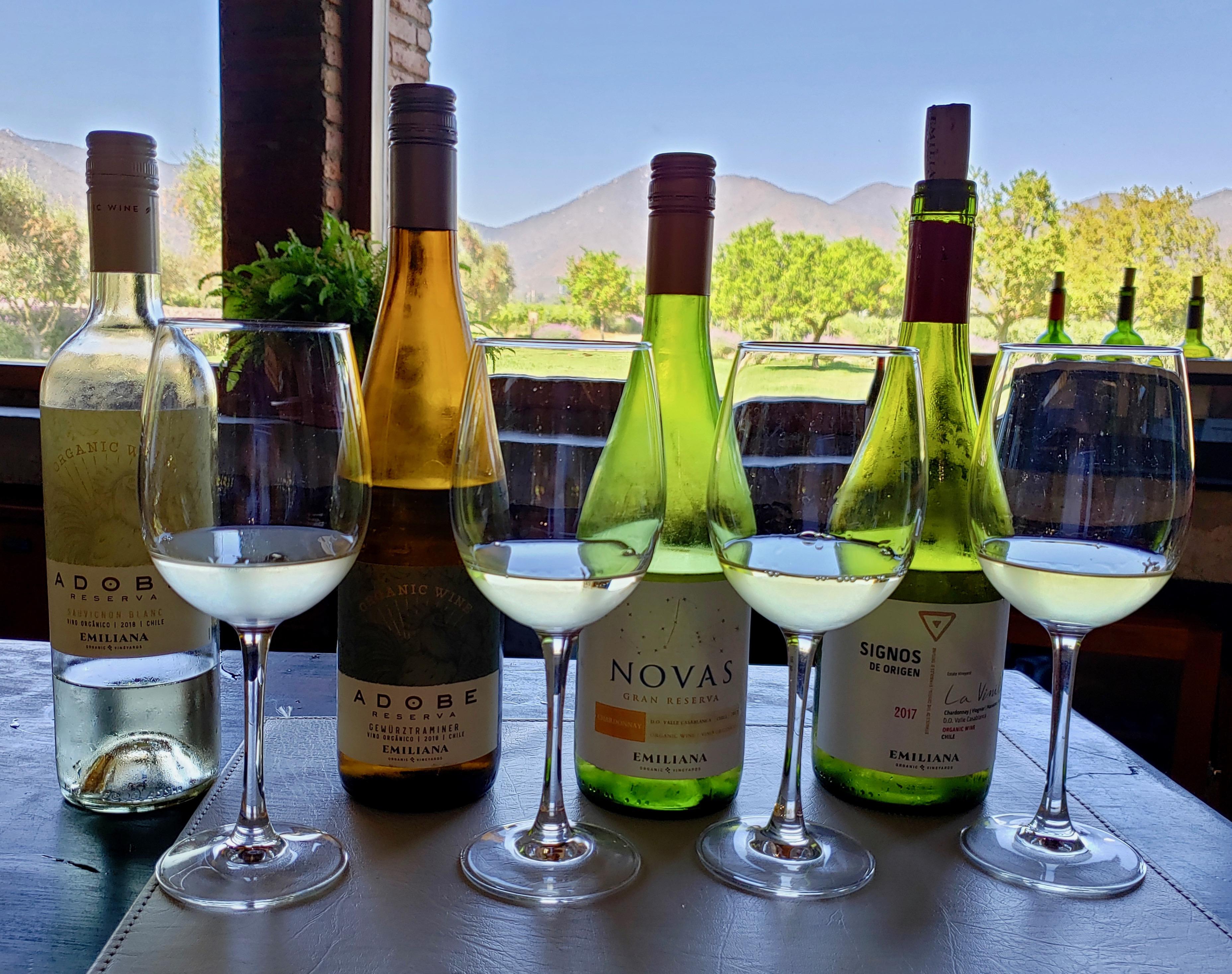 Wines, Emiliana Organic Vineyards, Casablanca Valley, Chile